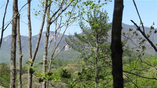 Lot 104 Roadrunner Circle #104, Lake Lure, NC 28746 (#3497502) :: Washburn Real Estate
