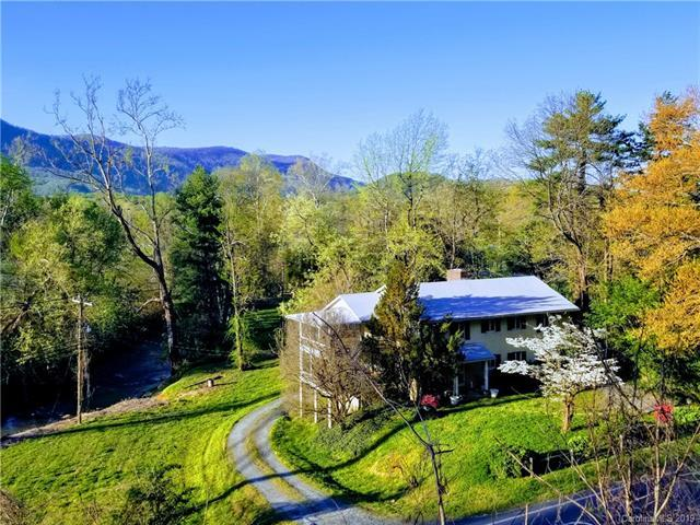 669 Harmon Field Road, Tryon, NC 28782 (#3497591) :: Homes Charlotte