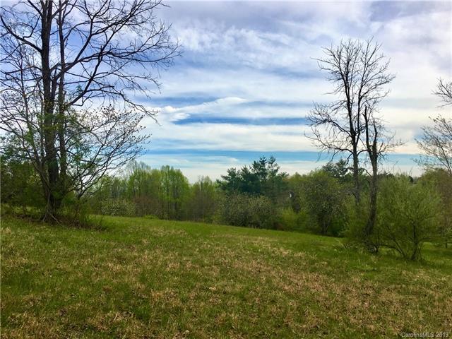 000 Deerfield Ridge Road #5, Hendersonville, NC 28792 (#3497598) :: LePage Johnson Realty Group, LLC