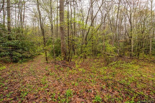 000 Mountain Laurel Lane, Fletcher, NC 28732 (#3497658) :: Exit Mountain Realty