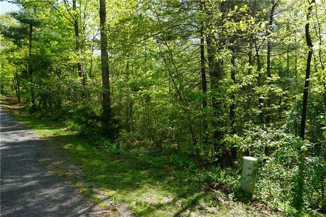 0000 Hibriten Mountain Road, Lenoir, NC 28645 (#3497666) :: Besecker Homes Team