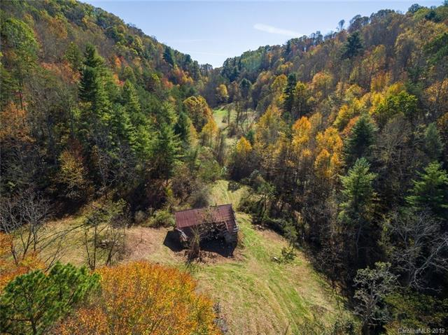 679 Clarks Branch rd Clarks Branch Road, Leicester, NC 28748 (#3497729) :: LePage Johnson Realty Group, LLC