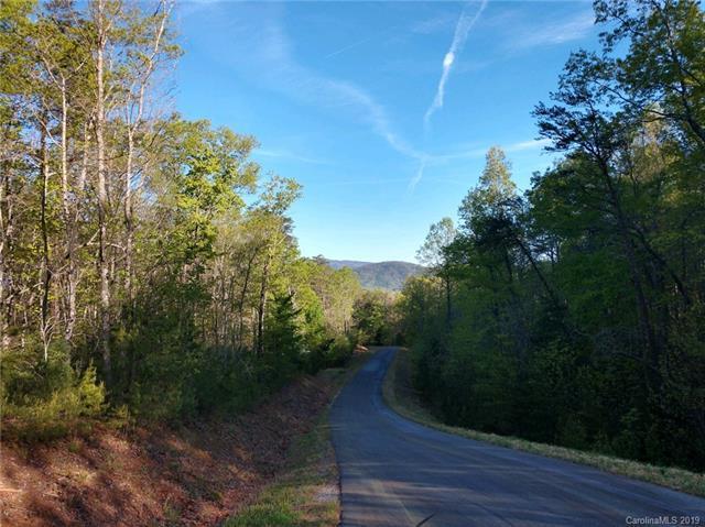 58 Bridgewater Road #58, Marion, NC 28752 (#3497808) :: DK Professionals Realty Lake Lure Inc.