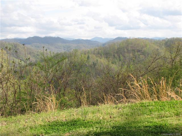 2129 Crooked Creek Road Lot 8, Mars Hill, NC 28754 (#3497913) :: Charlotte Home Experts