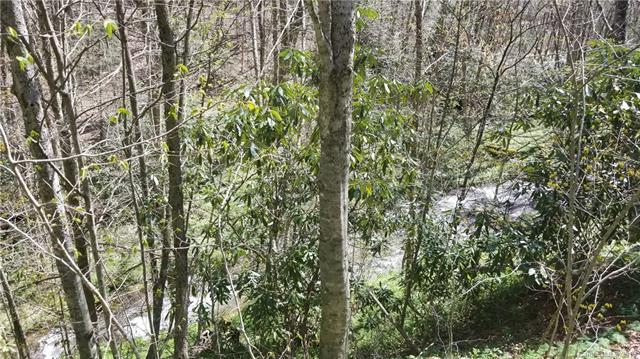 00 Mashstomp Road, Maggie Valley, NC 28751 (#3498708) :: Exit Realty Vistas