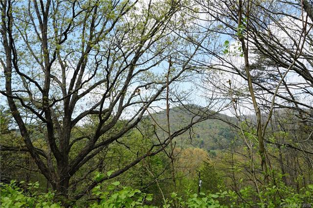 46 E Mountain Way 3 & 4, Asheville, NC 28805 (#3498721) :: Rinehart Realty