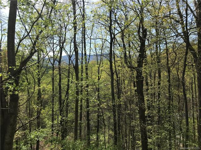 Lot 20 Magnolia Way #20, Waynesville, NC 28786 (#3498777) :: Premier Realty NC