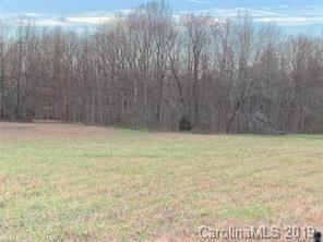 6100 County Line Road, Mount Pleasant, NC 28124 (#3498912) :: The Sarver Group