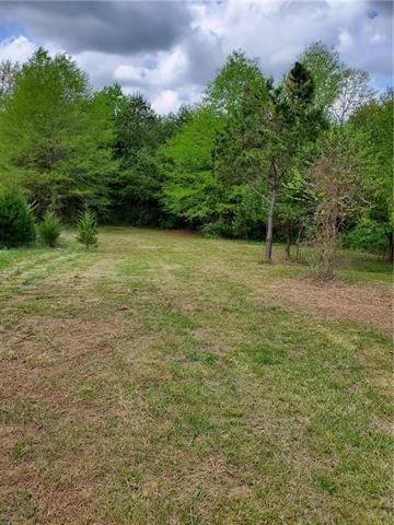 4815 Kent Street, Maiden, NC 28650 (#3499171) :: Johnson Property Group - Keller Williams