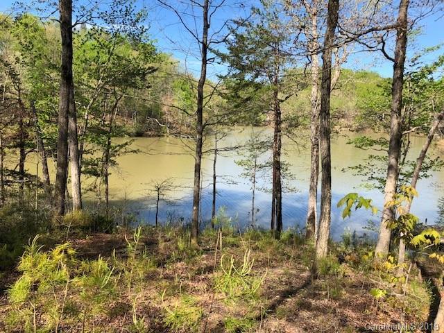 000 Mountain Parkway, Mill Spring, NC 28756 (#3499759) :: Cloninger Properties