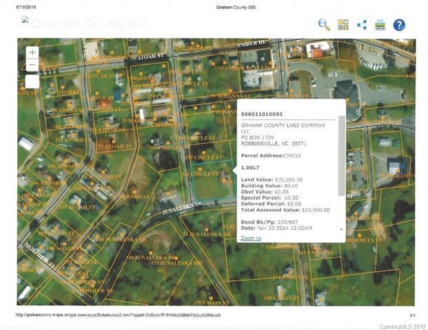319 Circle Street #319, Robbinsville, NC 28771 (#3500490) :: High Performance Real Estate Advisors