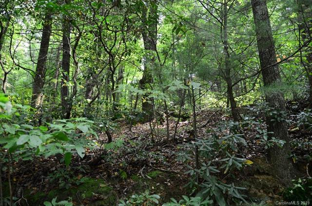 Lot 8 Miller Mountain Road #08, Saluda, NC 28773 (#3500618) :: Miller Realty Group