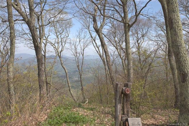 Lot 6 Nettles Cove Road 6/8, Burnsville, NC 28714 (#3500666) :: Bluaxis Realty