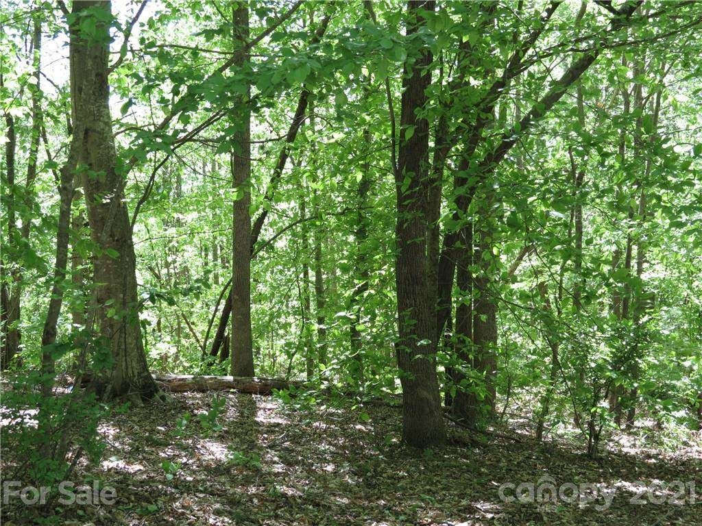 Lot 35 & 37 General Griffith Circle 35 & 37, Rutherfordton, NC 28139 (#3500943) :: Charlotte Home Experts