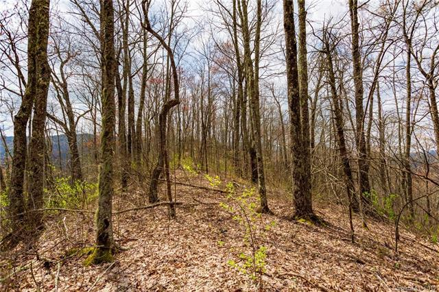 Lot 27 Black Rock Road #27, Qualla, NC 28719 (#3501158) :: Johnson Property Group - Keller Williams