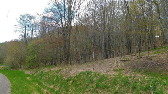 0 Old Farm Road, Banner Elk, NC 28604 (#3502407) :: Carlyle Properties