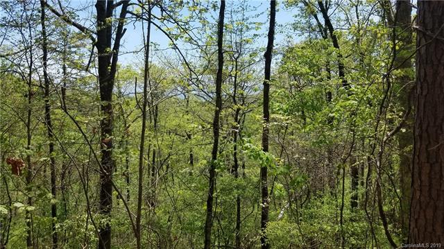 lot 33 and 35 Valley View Drive 33,35, Mars Hill, NC 28754 (#3502543) :: Carlyle Properties