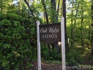 0 Duck Pond Lane, Columbus, NC 28722 (#3502564) :: Keller Williams Professionals