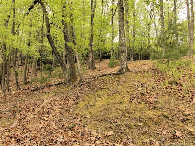 61 Buckhead Trail #30, Horse Shoe, NC 28742 (#3502668) :: Francis Real Estate