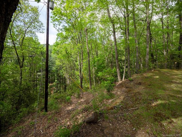 Lot 14 Deer Path Road, Waynesville, NC 28786 (#3502701) :: The Ramsey Group