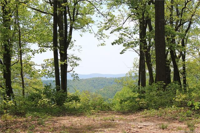 000000 Mcalpine Mountain Road, Zirconia, NC 28790 (#3502866) :: Stephen Cooley Real Estate Group