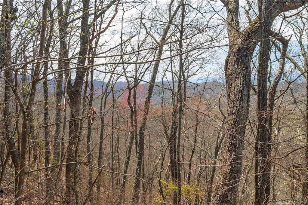 Lot 84 Ridge Point View - Photo 1