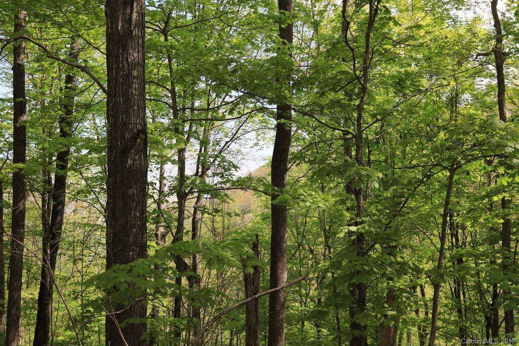 Lot 156 Rocky Knob Loop - Photo 1