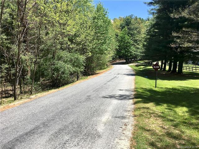 TBD Walnut Ridge Road, Brevard, NC 28712 (#3503463) :: Keller Williams Professionals