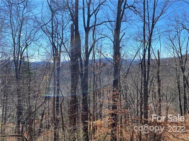 V/L Mountain Crest Drive S Lots 58,59, Marion, NC 28752 (#3503592) :: Rinehart Realty