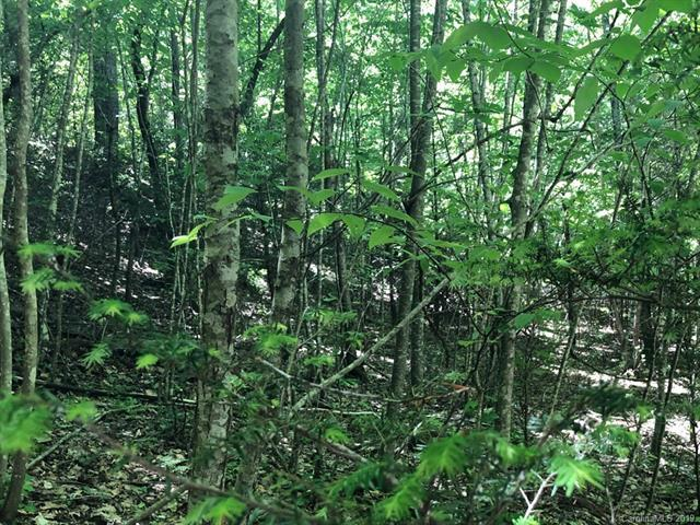 LOT 57 Clear Spring Trail, Nebo, NC 28761 (#3504542) :: Zanthia Hastings Team