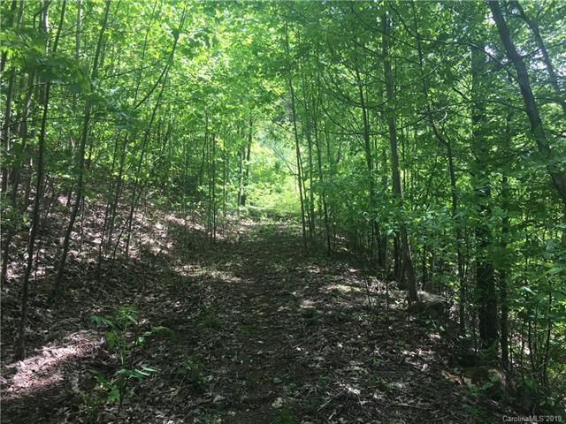 Lot 87 Blue Mist Way #87, Arden, NC 28704 (#3505017) :: Rinehart Realty
