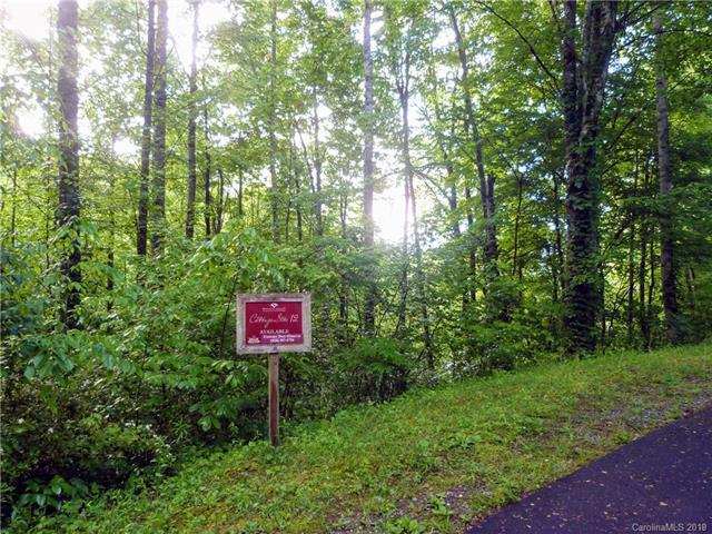 Lot 12 Loblolly Way, Maggie Valley, NC 28751 (#3505849) :: Francis Real Estate