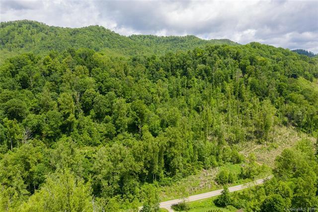 999 Metcalf Creek Loop, Mars Hill, NC 28754 (#3505875) :: Keller Williams Professionals