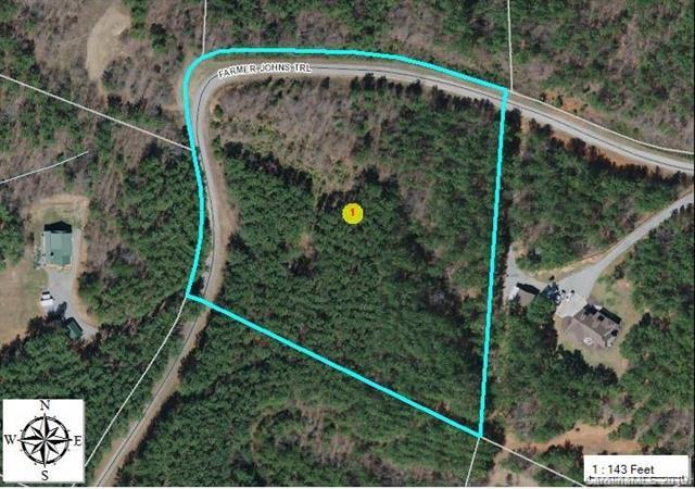 0 Farmer Johns Trail, Rutherfordton, NC 28139 (#3505984) :: The Sarver Group