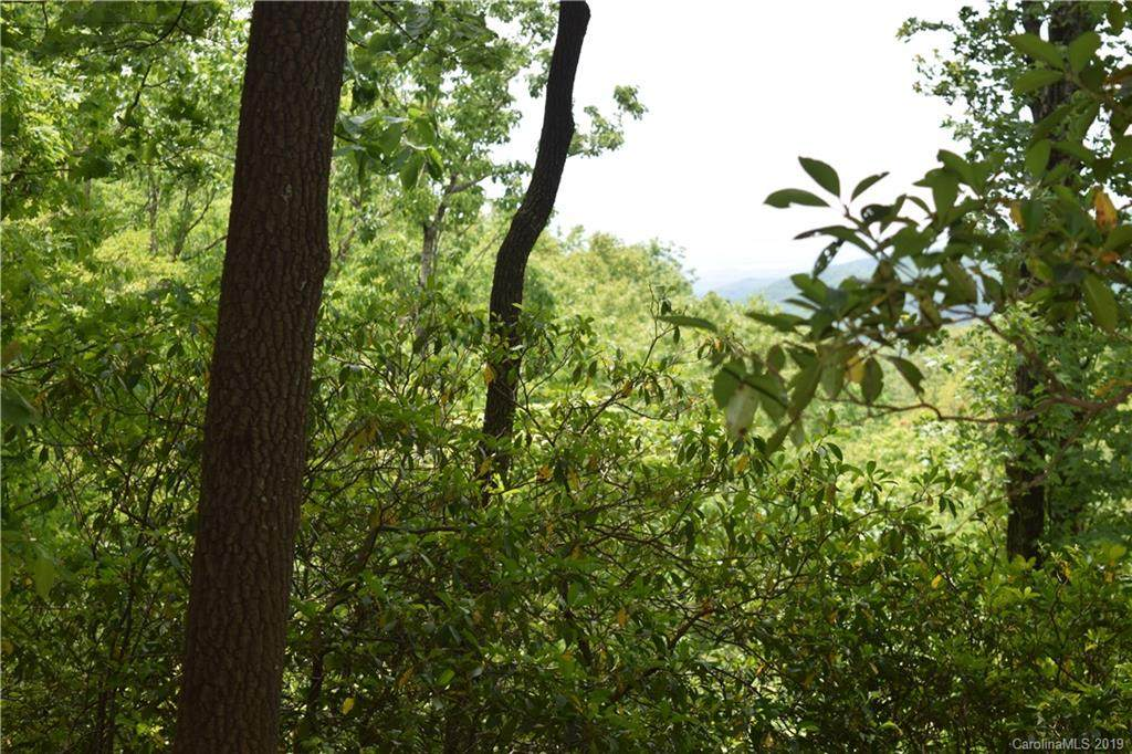Lot 2 Pickens Highway #2, Rosman, NC 28772 (#3506001) :: Roby Realty