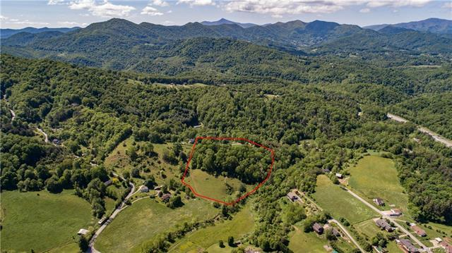 85 Jaynes Mountain Road, Canton, NC 28716 (#3506150) :: The Ramsey Group