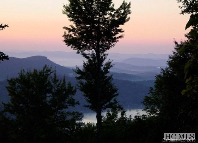 Lot 115 Toxaway Drive #115, Lake Toxaway, NC 28747 (#3506410) :: Stephen Cooley Real Estate Group