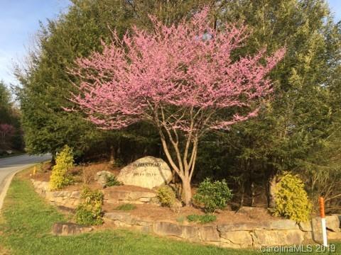 108 Caddis Lane, Horse Shoe, NC 28742 (#3506697) :: Francis Real Estate