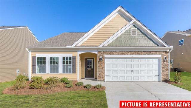 161 Atwater Landing Drive, Mooresville, NC 28117 (#3506842) :: High Performance Real Estate Advisors