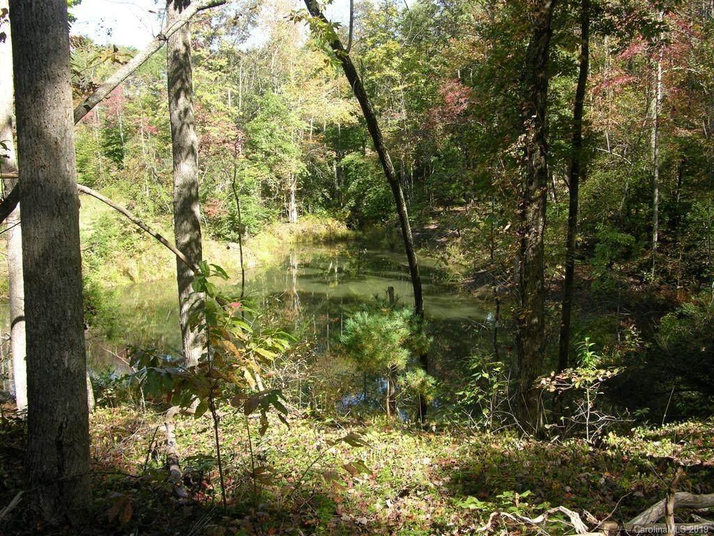39 Womack Road, Mill Spring, NC 28756 (#3506898) :: Robert Greene Real Estate, Inc.