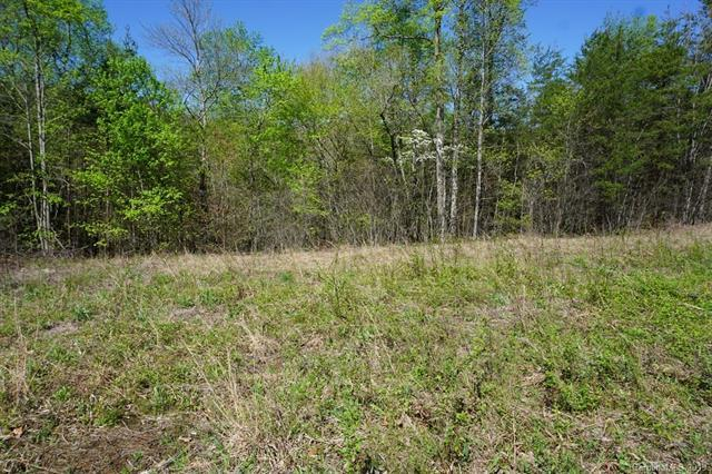 Lot 17, 18,& 19 White Pine Trace 17, 18, & 19, Mill Spring, NC 28756 (#3506963) :: Caulder Realty and Land Co.