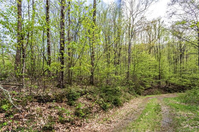 Lot 64 Big Springs Trail #64, Qualla, NC 28719 (#3507144) :: Johnson Property Group - Keller Williams
