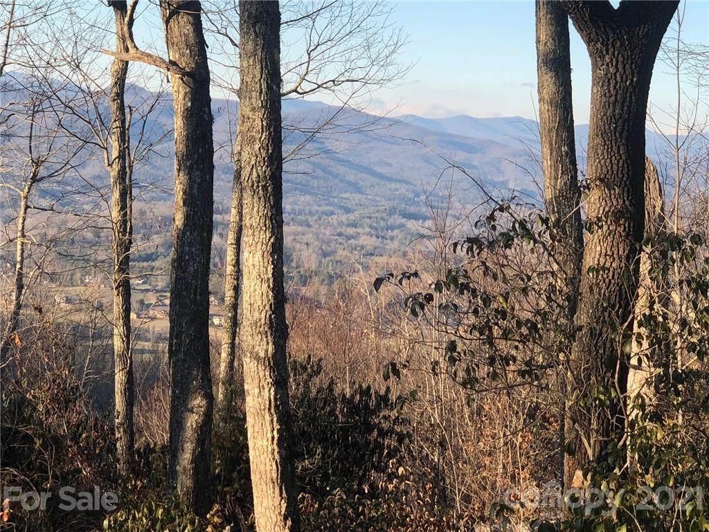 41 Pepperbush Ridge - Photo 1