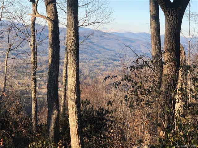 41 Pepperbush Ridge, Brevard, NC 28712 (#3507153) :: Caulder Realty and Land Co.