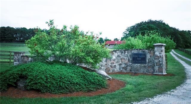 5911 Big Level Road, Mill Spring, NC 28756 (#3508464) :: Robert Greene Real Estate, Inc.