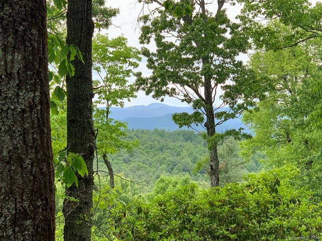 999 Lost Mine Trail #620, Brevard, NC 28712 (#3508751) :: LePage Johnson Realty Group, LLC