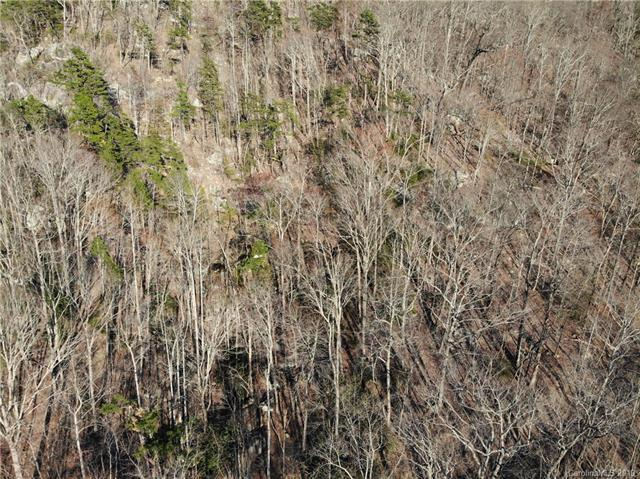 000 Hanging Rock Road Lot 45 & 47, Lake Lure, NC 28746 (#3509058) :: Stephen Cooley Real Estate Group