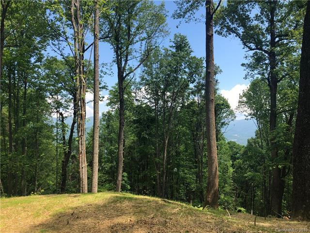 1414 Easy Wind Drive Lot 56, Swannanoa, NC 28778 (#3509117) :: Miller Realty Group