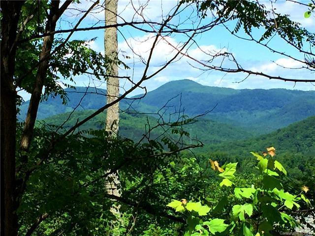 0 Coady Ridge Lane, Bostic, NC 28018 (#3509165) :: Keller Williams Professionals