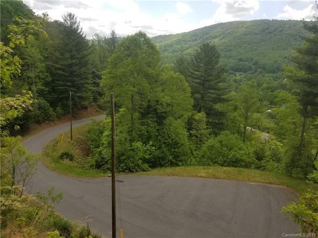 29 Autumn Trail Lane #3, Asheville, NC 28803 (#3509223) :: Keller Williams Professionals
